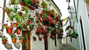 Pulsa para ver la imagen de: Ruta con encanto por Andalucía. | La Mimbre Rural